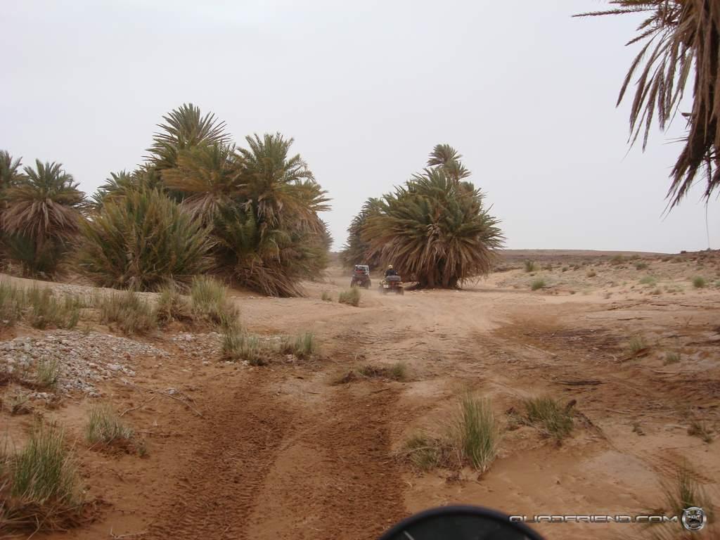 dsc00981_2007_02-sahara-experience