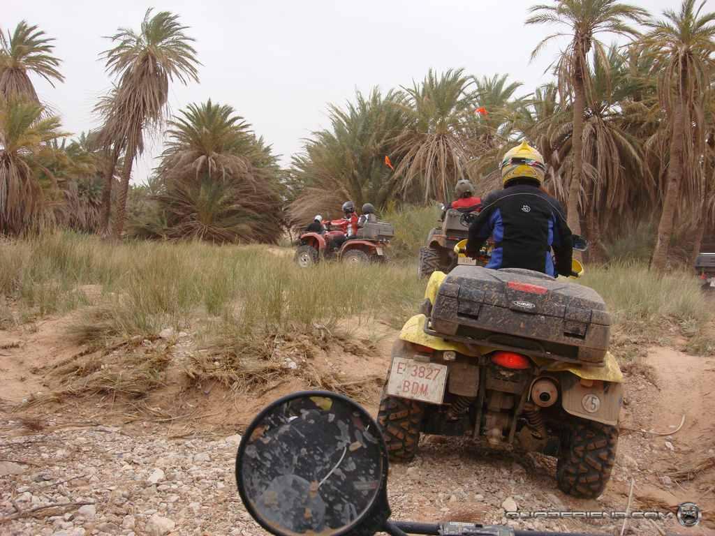 dsc00982_2007_02-sahara-experience