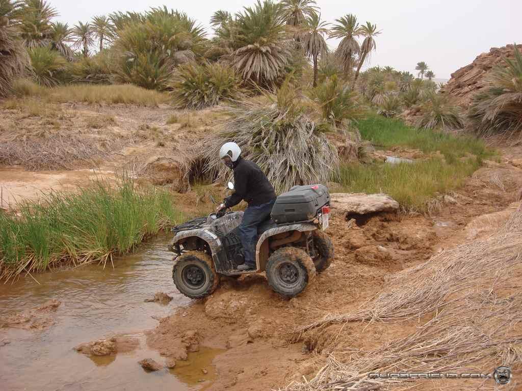 dsc00985_2007_02-sahara-experience