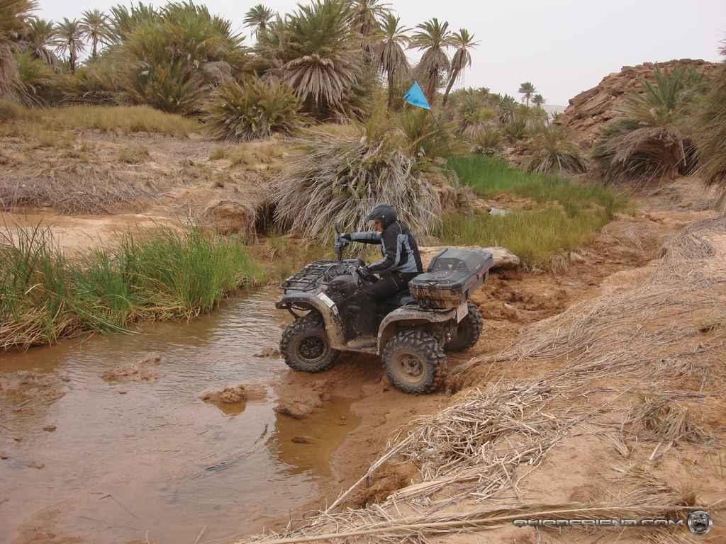 dsc00986_2007_02-sahara-experience