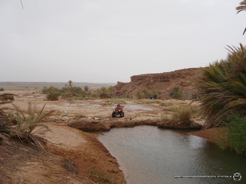 dsc00987_2007_02-sahara-experience