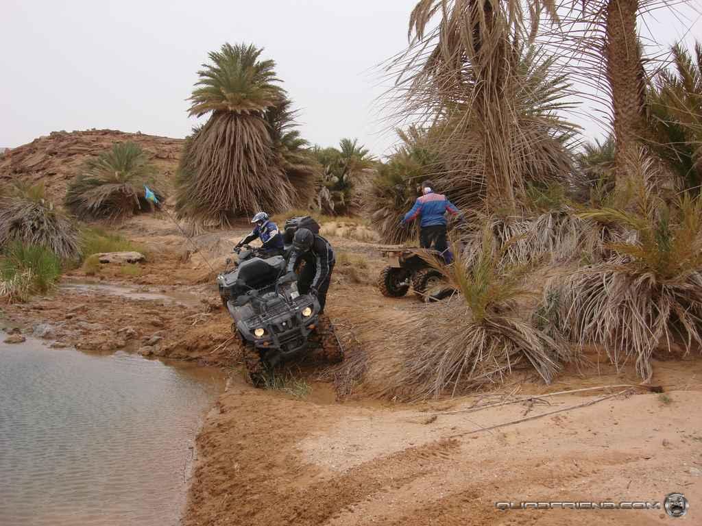 dsc00992_2007_02-sahara-experience