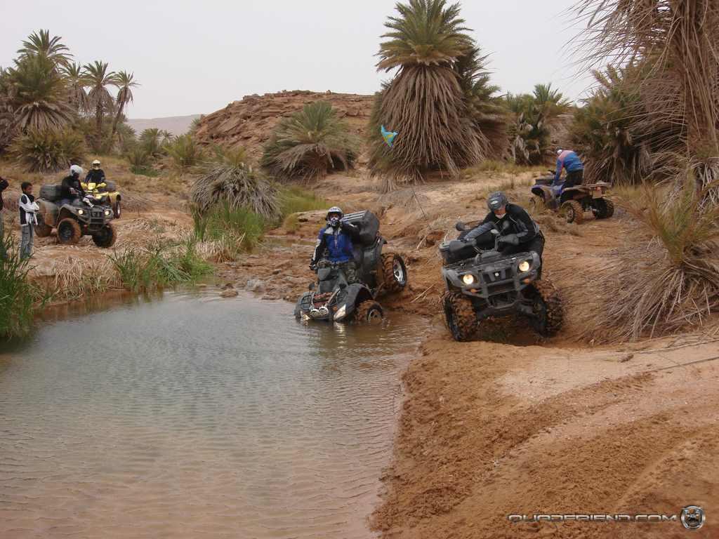 dsc00993_2007_02-sahara-experience