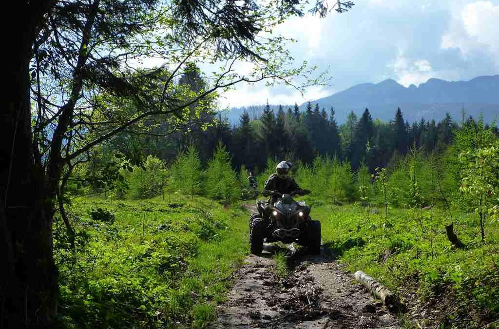 2011/05 Transilvania